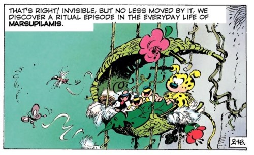 The Marsupilami's wife and three kids