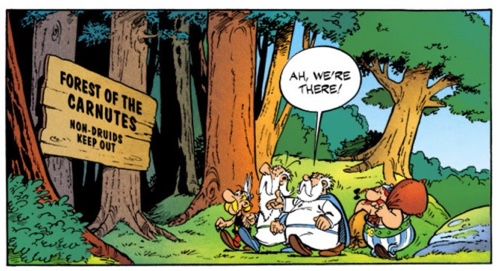 It's Druids only that are welcome in the Forest of the Carnutes for the Druid Conference